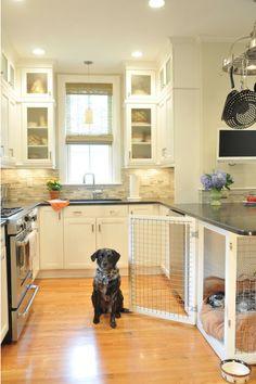7 Idee 235 N Om Een Saaie Hondenbench Leuk Te Maken