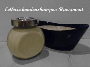 eetbare havermout shampoo