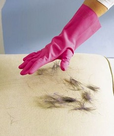rubberen handschoen hondenhaar verwijderen